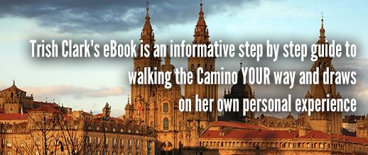 Guide to the Camino: St-Jean to Santiago de Compostela